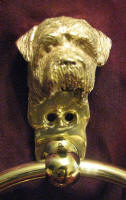 Norfolk Terrier Large Towel Ring, close up